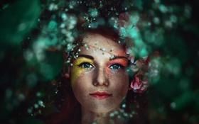 Обои взгляд, цвета, девушка, макияж, веснушки, eyes of the forest