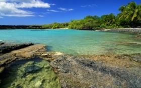 Обои небо, вода, пейзаж, природа, камни, пальмы, океан