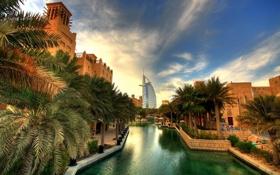 Обои пальмы, улица, здания, канал