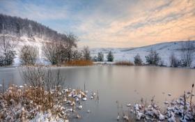 Обои пейзаж, кусты, деревья, холмы, зима, снег, озеро