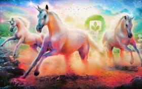Картинка цвета, облака, птицы, река, камни, кони, радуга