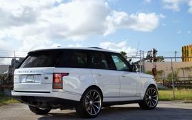 Картинка джип, sport, white, Land Rover, Range Rover, задок