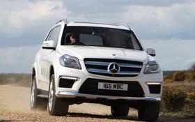 Обои Mercedes-Benz, внедорожник, мерседес, AMG, универсал, Sports Package, BlueTec