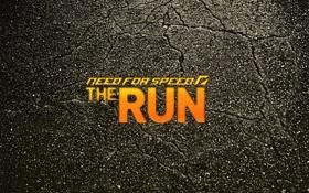 Обои гонки, sport, NFS, тачки., need for sped, адренолин