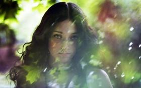 Обои взгляд, девушка, солнце, блики, симпатичная, яркая, Sweet lady