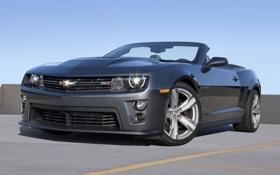 Обои Chevrolet, Camaro, родстер, кабриолет, шевроле, Convertible, ZL1