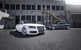 Картинка белый, Audi, здание, окна, Ауди, серебристый, white