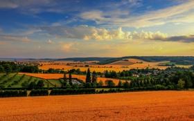 Обои облака, деревья, Франция, поля, панорама, France, Шампань-Арденны