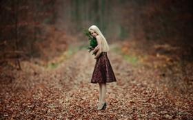 Обои лес, девушка, юбка, туфли, одна
