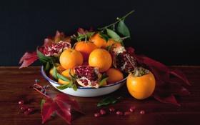 Картинка мандарины, хурма, гранат, еда, фрукты, ягоды