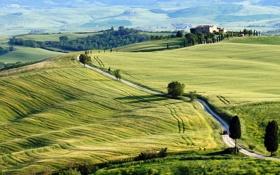 Картинка дорога, поле, небо, деревья, природа, дом, холмы