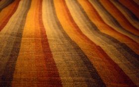 Обои ткань, линии, цвета