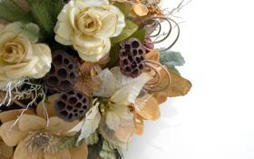 Обои белый, листья, цветы, праздник, новый год, рождество, christmas