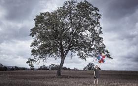 Обои поле, девушка, шары
