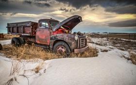 Картинка metal, snow, truck, abandoned, rust, dry vegetation