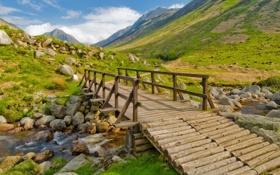 Обои мост, ручей, камни, долина, переправа