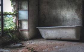 Обои комната, окно, ванна