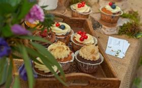 Обои muffins, cupcakes, крем, пирожное, еда, кексы, сладкое