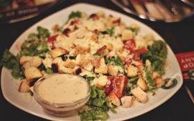 Обои курица, тарелка, помидоры, салат, цезарь, сухарики