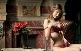 Обои розы, стул, нижнее белье, девушка, Камин, барельеф, ваза