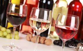 Обои виноград, бутылки, бокалы, белое, розовое, орехи, красное