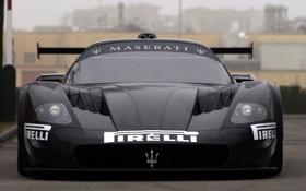 Обои фары, Maserati, тачка, суперкар, класс, красотка