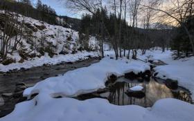 Картинка зима, вода, снег, деревья, река, ручей, камни