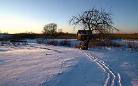 Картинка зима, снег, дом, утро