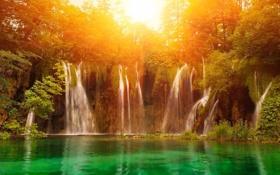 Обои Водопад, лес, свет, солнце