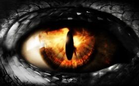 Обои глаз, дракон, арт, t1na