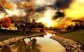 Обои деревья, река, золотое небо
