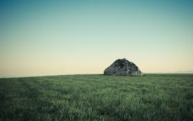 Картинка трава, газон, камень, мох, склон, холм