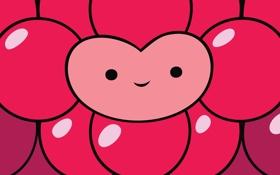 Обои круги, улыбка, сердце, Adventure Time Wild Berry Princess