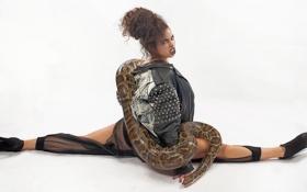 Картинка змея, Model, шпагат, Anasthasia