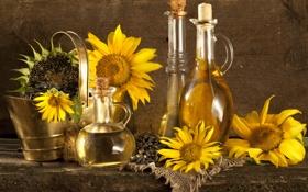 Обои подсолнухи, стол, масло, семечки, графин, ведёрко, бутыли