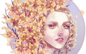 Обои взгляд, ветки, лицо, волосы, арт, цветочки, Sillselly