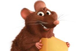 Обои улыбка, сыр, белый фон, зверек, крыса, Рататуй, Ratatouille