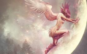 Картинка звезды, полет, магия, Девушка, крылья, перья, когти