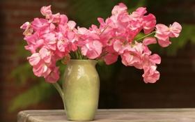 Обои цветы, стол, розовый, букет, кувшин