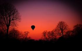 Обои небо, деревья, закат, воздушный шар, силуэт, зарево