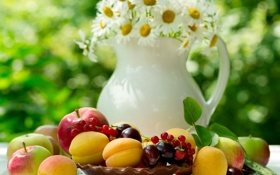 Обои яблоки, ромашки, summer, фрукты, flowers, абрикосы, fruits