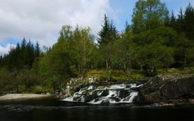 Картинка лес, деревья, река, Шотландия, каскад, Scotland, River Orchy