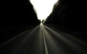 Обои дорога, лес, скорость