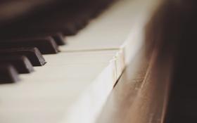 Обои клавиши, пианино, музыкальный инструмент