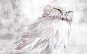 Обои зима, снег, сова, птица, арт, белая