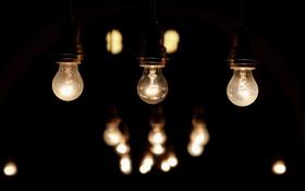 Обои свет, тьма, лампочки