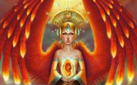 Картинка девушка, украшения, птица, крылья, перья, арт, феникс