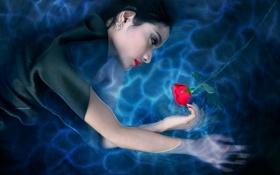 Картинка вода, девушка, роза, арт