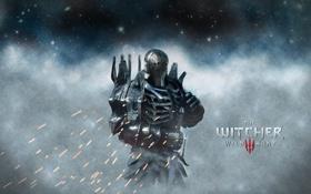 Обои sword, armor, CD Projekt RED, The Witcher 3: Wild Hunt, Ведьмак 3: Дикая охота