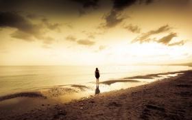 Картинка море, девушка, закат